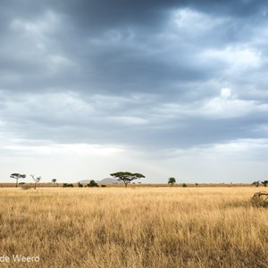 2015-10-19 - Donkere wolken boven de vlakte<br/>Serengeti National Park - Tanzania<br/>Canon EOS 5D Mark III - 36 mm - f/8.0, 1/8 sec, ISO 200