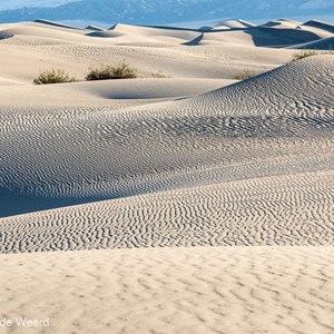 2014-07-25 - Prachtige enorme zandduinen<br/>Death Valley National Park - Verenigde Staten<br/>Canon EOS 5D Mark III - 115 mm - f/8.0, 1/320 sec, ISO 400