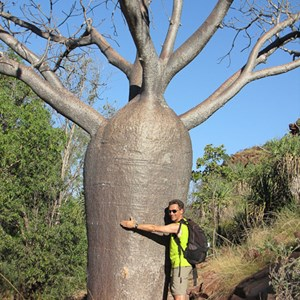 2011-07-23 - Baobab hugging<br/>Jinimum walk - Keep River National Park - Australië<br/>Canon PowerShot SX1 IS - 13.8 mm - f/4.0, 1/640 sec, ISO 80