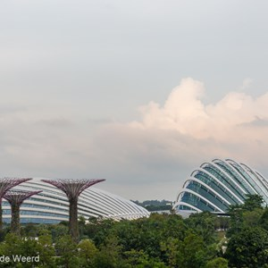 2018-11-18 - Supertrees en de domes<br/>Gardens by the Bay - Supertrees - Singapore - Singapore<br/>Canon EOS 5D Mark III - 70 mm - f/8.0, 1/60 sec, ISO 400