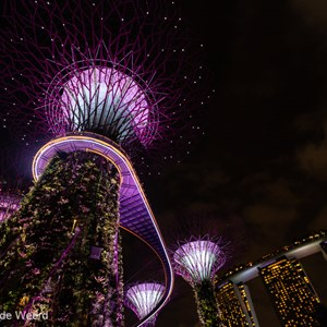 2018-11-18 - Met alle verlichting wordt het sprookjesachtig<br/>Gardens by the Bay - Supertrees - Singapore - Singapore<br/>Canon EOS 5D Mark III - 16 mm - f/4.0, 1/13 sec, ISO 1600