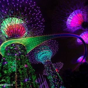 2018-11-18 - De sound-and-light show is fantastisch<br/>Gardens by the Bay - Supertrees - Singapore - Singapore<br/>Canon EOS 5D Mark III - 16 mm - f/4.0, 0.1 sec, ISO 1600