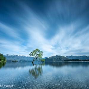 2018-12-07 - That Wanaka tree met lange sluitertijd<br/>That Wanaka Tree (Lake Wanaka) - Wanaka - Nieuw-Zeeland<br/>Canon EOS 5D Mark III - 19 mm - f/16.0, 164 sec, ISO 100