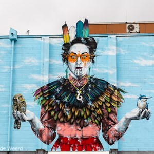 2018-12-14 - Street art door Findac<br/>Christchurch Street Art - Christchurch - Nieuw-Zeeland<br/>Canon EOS 5D Mark III - 70 mm - f/8.0, 1/250 sec, ISO 200