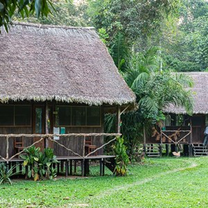 2019-09-20 - Onze hut van de jungle lodge<br/>NP Madidi - Apolo - Bolivia<br/>Canon EOS 5D Mark III - 70 mm - f/8.0, 0.1 sec, ISO 400